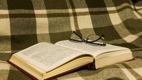 法语阅读:《茶花女》