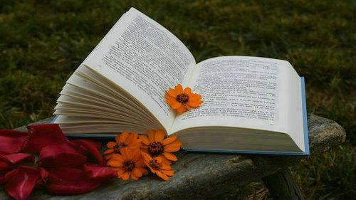 西语诗歌欣赏